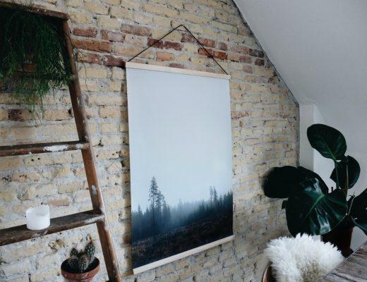 skog2.jpg
